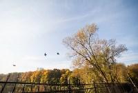 Золотая осень в Тульской области, Фото: 61