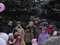 Масленичные гулянья в Плавске, Фото: 11