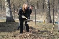 3200 кустов и деревьев высадили сегодня в Туле в ходе субботника, Фото: 4