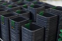 Леруа Мерлен: Какие выбрать семена и правильно ухаживать за рассадой?, Фото: 4