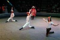 Цирк «Вива, Зорро!» в Туле , Фото: 86