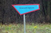 Стрельба, БТР и спасение раненых: в Тульской области бойцы Росгвардии неделю жили в лесу, Фото: 1