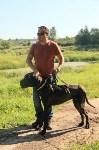 Рейд против незаконного выгула собак в парке. 30.07.2015, Фото: 8