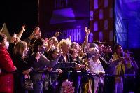Праздничный концерт: для туляков выступили Юлианна Караулова и Денис Майданов, Фото: 82