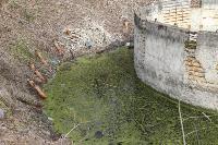 С заброшенных очистных канализация много лет сливается под заборы домов, Фото: 7