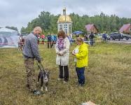 Международная выставка собак, Барсучок. 5.09.2015, Фото: 66