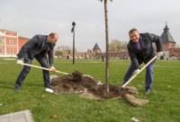 Члены правительства региона высадили аллею в кремле, Фото: 6
