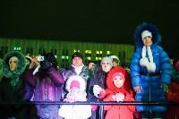 Главную ёлку Тулы открыли грандиозным фейерверком, Фото: 29