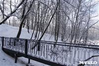 Зимняя сказка Платновского парка, Фото: 5