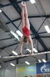 Соревнования по спортивной гимнастике на призы Заслуженных мастеров спорта , Фото: 63