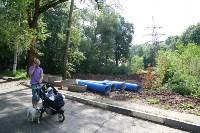 Жители Зеленстроя: Что хотят построить  в Платоновском парке?  , Фото: 24