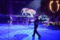 Цирковое шоу, Фото: 126