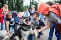 Школодром-2017, Фото: 317