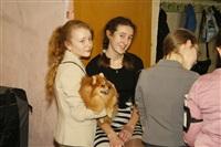 В Туле прошла всероссийская выставка собак, Фото: 48