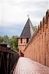 На территории кремля снова начались археологические раскопки, Фото: 9
