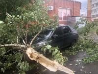 Дерево упало на авто, Фото: 5