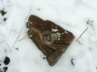 В Тульском лесу нашли загадочную поляну с крестами, елкой и зеркалами, Фото: 5