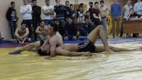 Соревнования по вольной борьбе ТулГУ, 28.04.2016, Фото: 8
