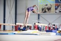 Соревнования по спортивной гимнастике на призы Заслуженных мастеров спорта , Фото: 44