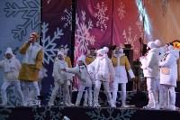На площади Ленина в Туле открылась новогодняя ярмарка , Фото: 12
