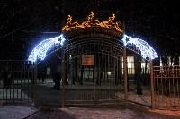 Тульские парки украсили к Новому году, Фото: 9
