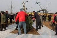 Возле мемориала «Защитникам неба Отечества» высадили еловую аллею , Фото: 19