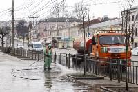 В Туле продолжается масштабная дезинфекция улиц, Фото: 8