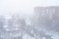 Мартовский снег в Туле, Фото: 91