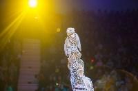 """""""Тайна пирата"""" в Тульском цирке, Фото: 113"""