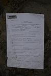 Документы клиентов страховой компании летают по улице, Фото: 12