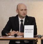 В Тульской области обсудили вопросы инвестсотрудничества с  делегатами из Чехии, Фото: 2