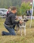 Международная выставка собак, Барсучок. 5.09.2015, Фото: 15