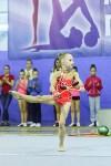 Кубок общества «Авангард» по художественной гимнастики, Фото: 115