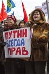 В Туле проходит митинг в поддержку Крыма, Фото: 12