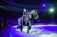 Туляков приглашают на новогоднее представление «Ёлка в цирке», Фото: 74