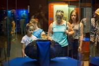 """Выставка """"Королевские игры"""" в музее оружия, Фото: 54"""