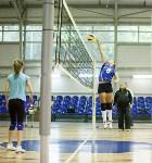 Тульские волейболистки готовятся к сезону., Фото: 22