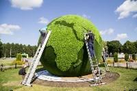 Арт-объект «Зеленая планета», Фото: 5