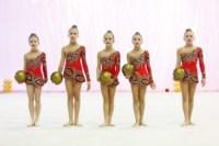 Межрегиональный турнир по художественной гимнастике — «Осенний вальс». 6-7 сентября 2014, Фото: 14