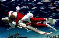 Невероятный Санта, Фото: 5