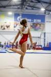 Спортивная гимнастика в Туле 3.12, Фото: 140