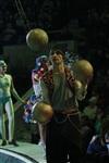 В Тульском цирке прошла премьера аква-шоу, Фото: 4