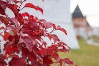 Золотая осень в Туле-2019, Фото: 40