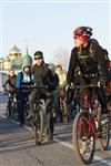 Велосветлячки в Туле. 29 марта 2014, Фото: 55
