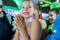 Туляки отметили Старый Новый год ледовым шоу, Фото: 24
