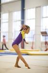 Спортивная гимнастика в Туле 3.12, Фото: 115