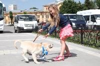Собака от президента. 1 июня 2015, Фото: 11