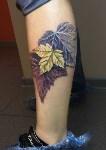 Всё о татуировке, Фото: 13
