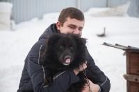 Сергей Алдокимов: Эко-дом в Алексине, Фото: 30
