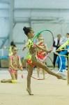 Кубок общества «Авангард» по художественной гимнастики, Фото: 63